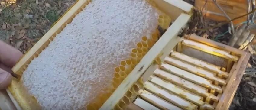 Мед та віскі вилікували від Коронавірусу